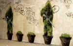 Зеленое граффити