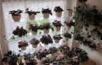 Как сделать этажерку для цветов